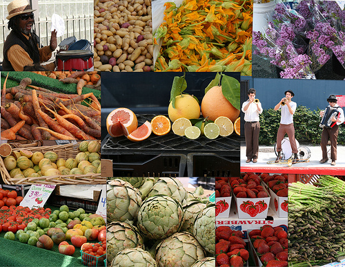 March 8 Farmer's Market Collage