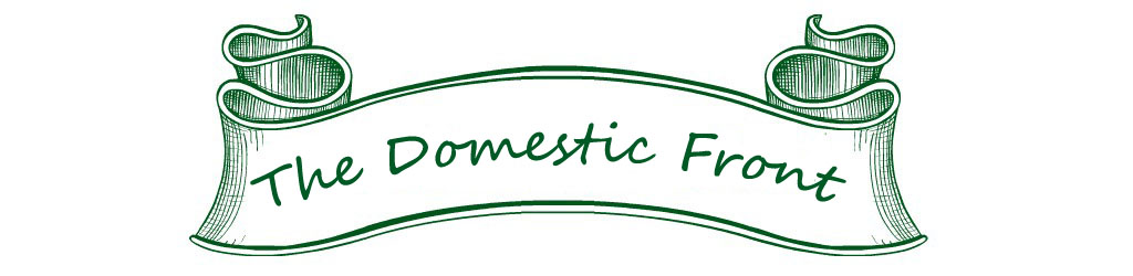 The Domestic Front BLog