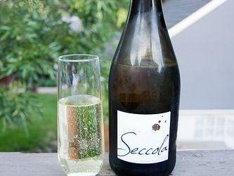 Trader Joe's Cheap Wine Pick: Seccola Italian Sparkling Wine